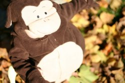 Aidan's Monkey Costume